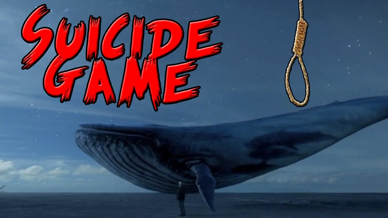 """The Truth behind Suicidal Game """"Blue Whale"""" - Students Blog: Trending News, Student's skills development, News & Trend Updates"""